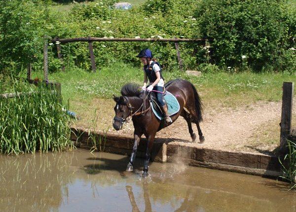 Wickstead Farm Equestrian Centre
