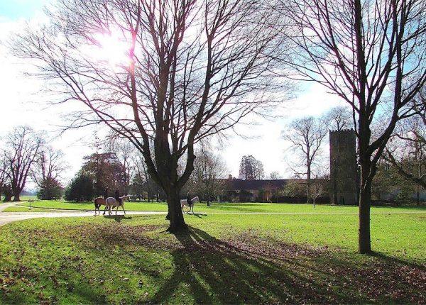 Charlton Park Estate