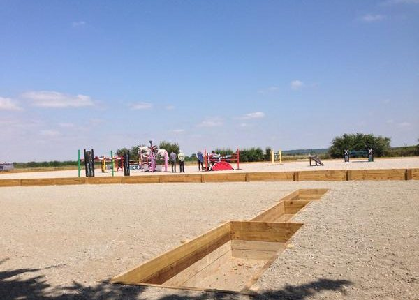Wickstead Horse Play