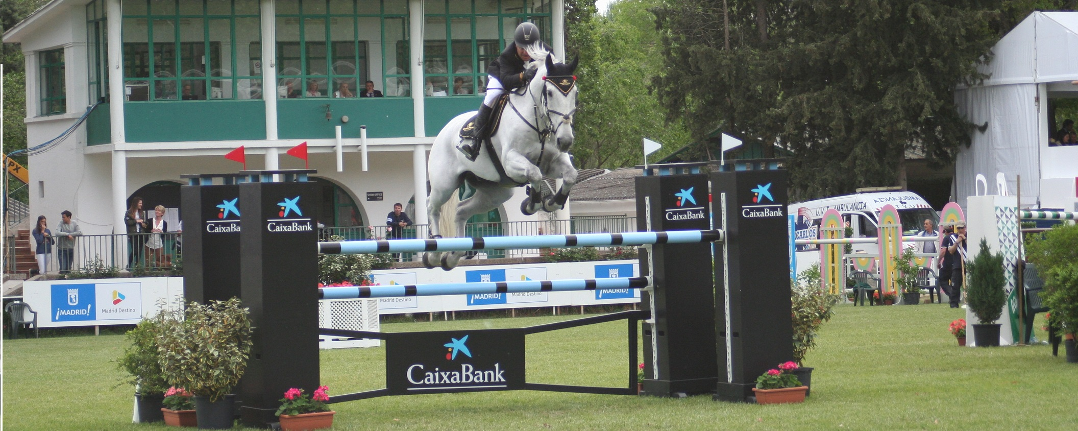 Horse Jumping Widescreen Horse Events