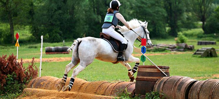 Hunter Trials Horse Events