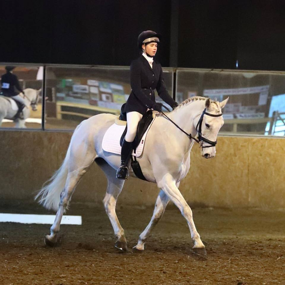 Dressage Events Horse Events