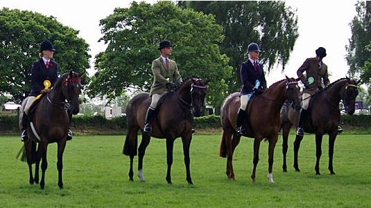 Moss End Horse Show