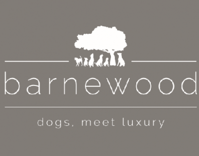 Barnewood Boarding Kennels  sponsors Wickstead HorsePlay Mini Show Jumping