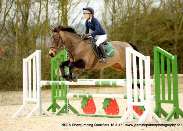 Wickstead HorsePlay Mini Show Jumping