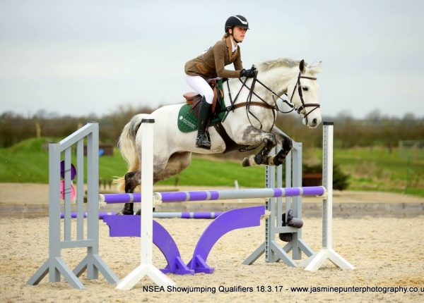 Wickstead HorsePlay Show Jumping Competition