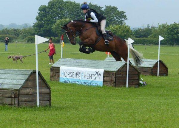 Elmwood Equestrian Spring Unaffiliated ODE