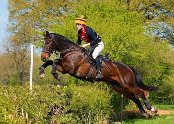 THE BICESTER HUNT WITH WHADDON CHASE TEAM CHASE PAIRS HUNTER TRIALS & GATE JUMPING COMPETITION