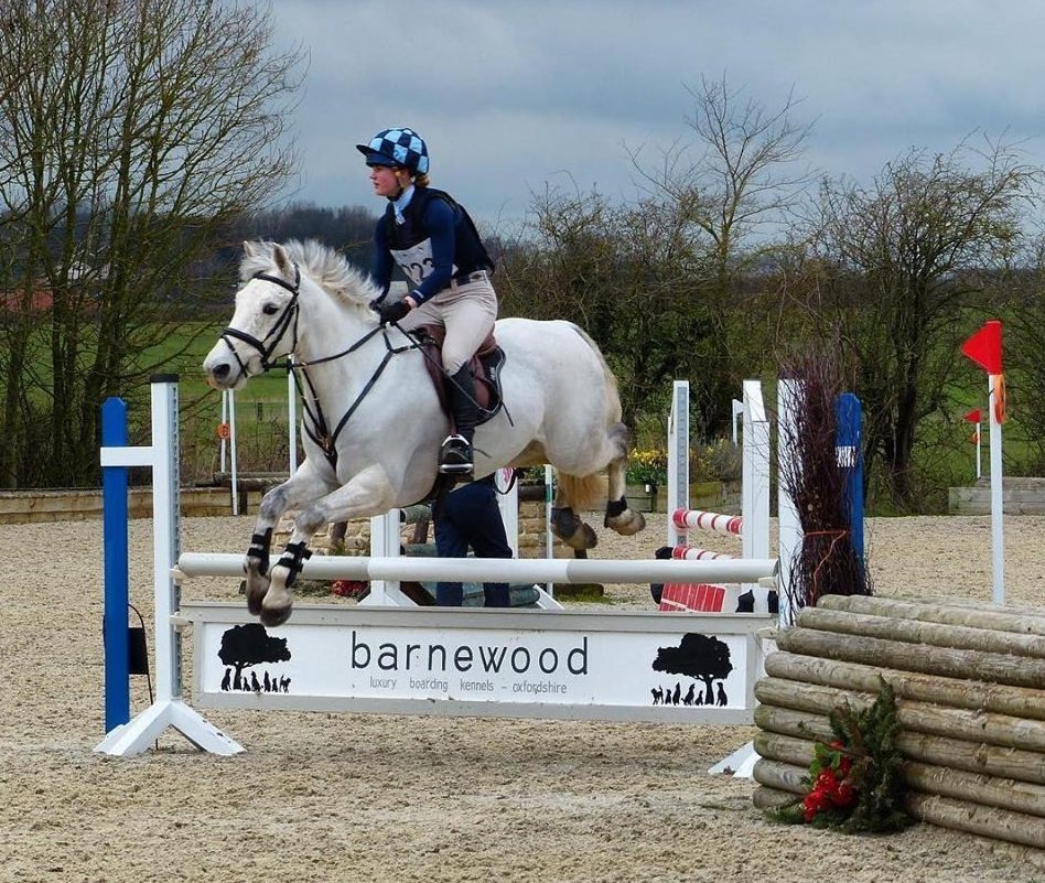 Wickstead Horseplay Naf 2 Phase Arena Eventing Sj Amp Xc