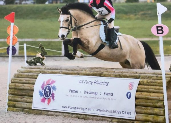Wickstead HorsePlay NAF Optimum 2 Phase Arena Eventing SJ & XC