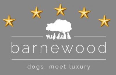 Barnewood Boarding Kennels sponsors Broadway Unaffiliated ODE – Around Championship Course – 5th October