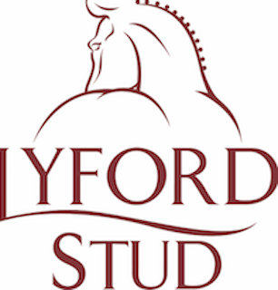 LYFORD STUD – MINI ONE DAY EVENT