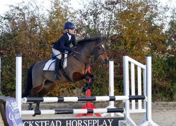WICKSTEAD HORSEPLAY ARENA EVENTING COMPETITION