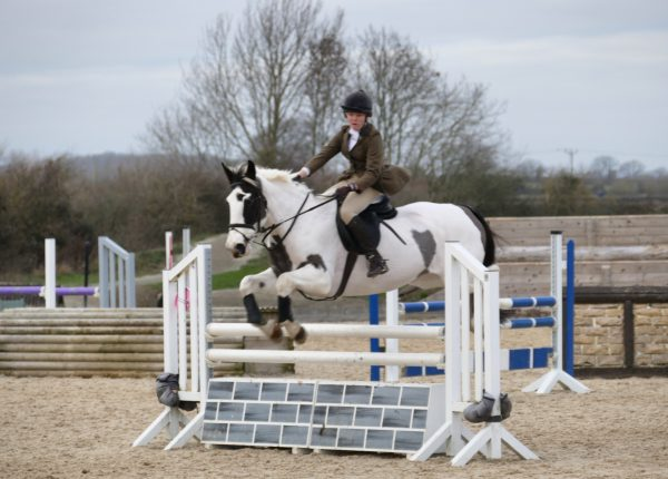 Wickstead Horseplay Dec Unaffiliated SJ